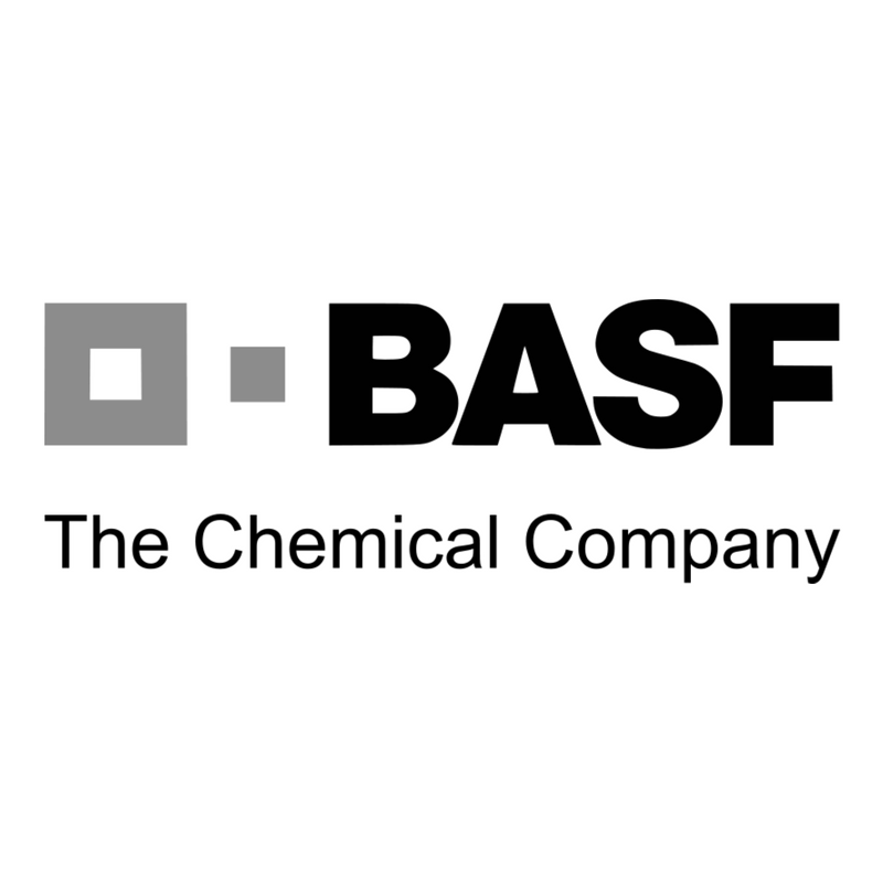 BASF THE CHEMICAL COMPANY – SOCIO UNIDEM