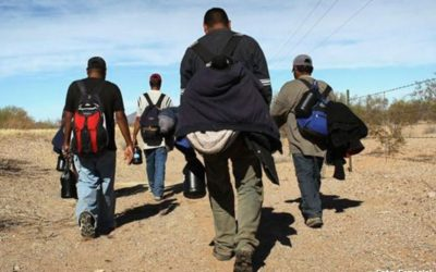 Se deben abrir espacios a migrantes al campo e industria: UNIDEM