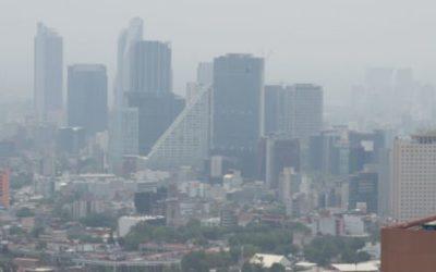 Empresarios rechazan ser responsables de contingencia ambiental