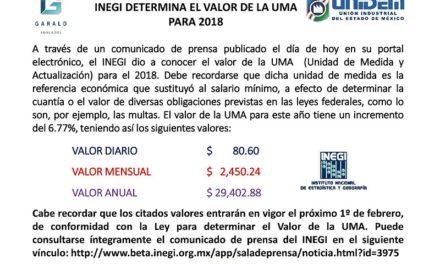 INEGI DETERMINA EL VALOR DE LA UMA PARA 2018