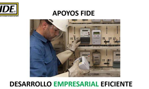 EFICIENCIA ENERGÉTICA archivos - UNIÓN INDUSTRIAL DEL ESTADO
