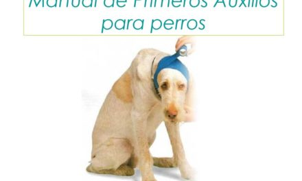 MANUAL DE PRIMEROS AUXILIOS PARA PERROS, (Descarga de información valiosa en PDF).